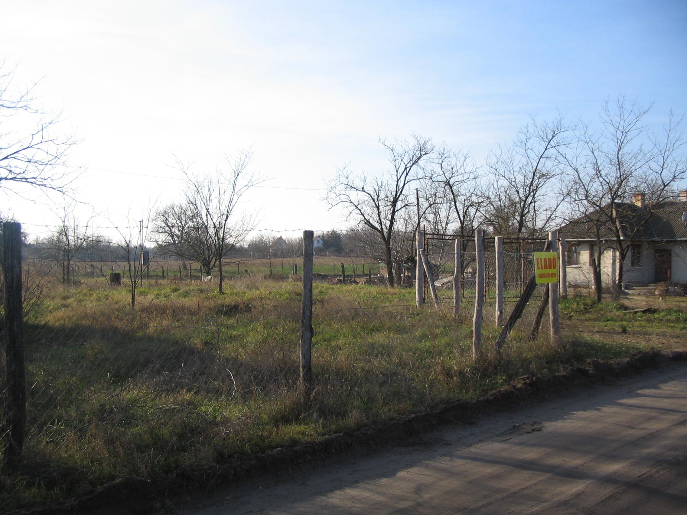 Kiskunhalas, Borostyán utcában beépíthető terület.